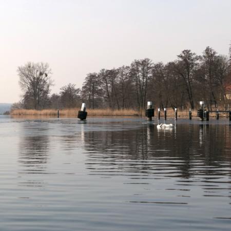 Eis auf der Havel - Anrudern 2018