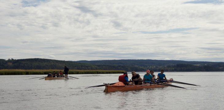 Elche beobachten und Rudern – DRJ-Sommercamp in Norwegen