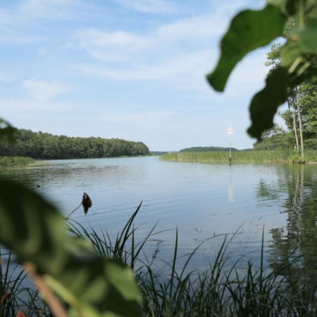 Verwunschenes Ufer der Wublitz