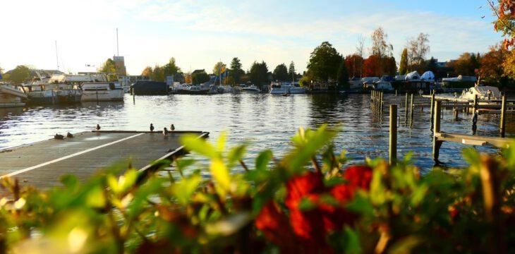 Herbstgedanken vor dem 'Lockdown-Light'
